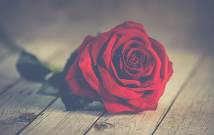 Give a romantic experience this Sant Jordi