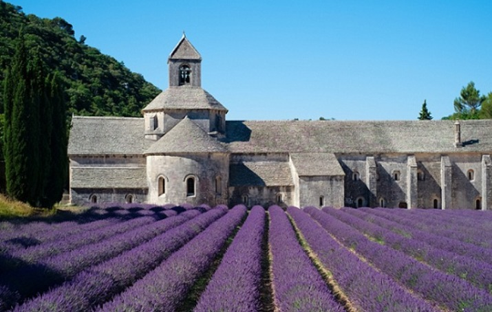 Escape to Provence